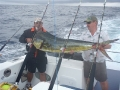 Dorado, caught on board South Africa\'s Nikao Charters