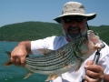 A tigerfish courtesy of South Africa\'s Nikao Charters