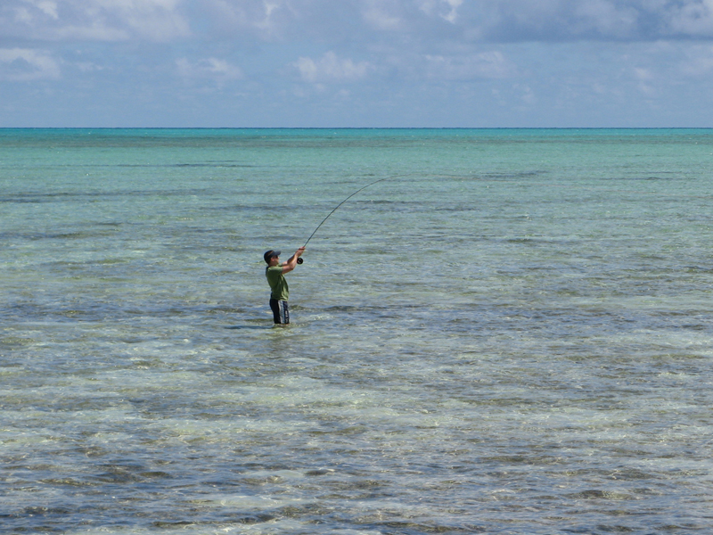 - bahamas-1