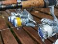 Bass fishing in Ireland