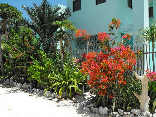 Casa de Suenos, Xcalak, Mexico