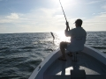 Tarpon fishing in Costa Rica