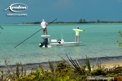 Avalon Fishing, Cayo Largo