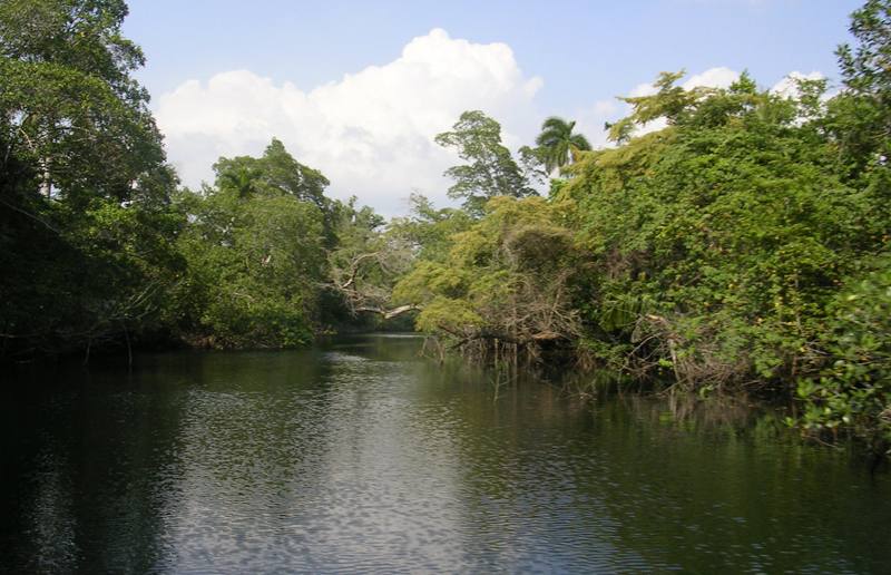 Rio Hatiguanico