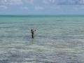 Fish on! Andros Island