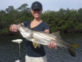 Snook: plentiful along the West Coast