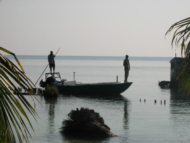Reel dreams international belize fishing guides charters for Punta gorda fishing