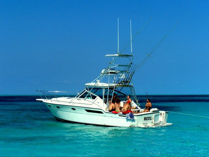 reel dreams sport fishing charters nassau fishing guides