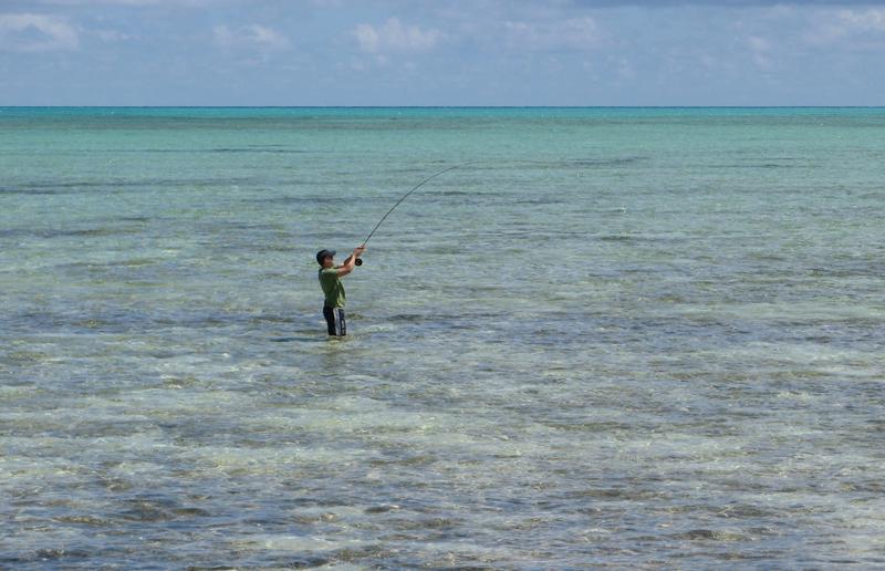 Fish on! Seascape flat