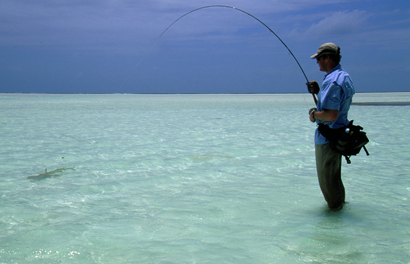 Fishing in the seychelles for Seychelles fly fishing
