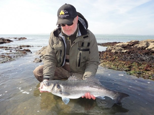 Early-Season Report -- Bass Fishing Wexford