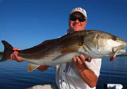 Mosquito Lagoon Fishing Report, June 23 2012