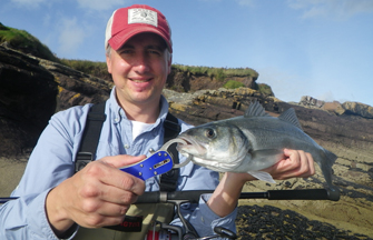Bass Fishing in England & Wales