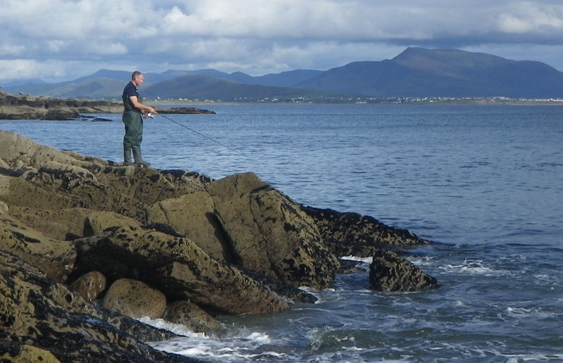 Fishipedia report bass fishing in kerry ireland for Middle keys fishing report