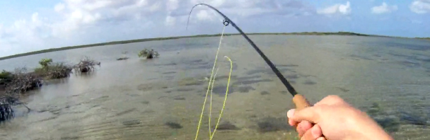 Video Goodness: Fly Fishing for Cozumel Bonefish