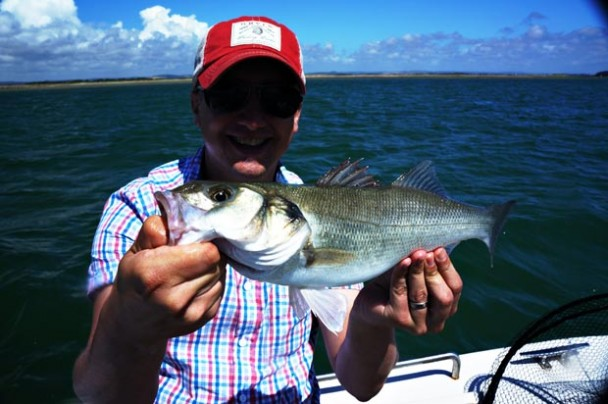 Picture Special: Bass Fishing in Chichester Harbour, South Coast UK