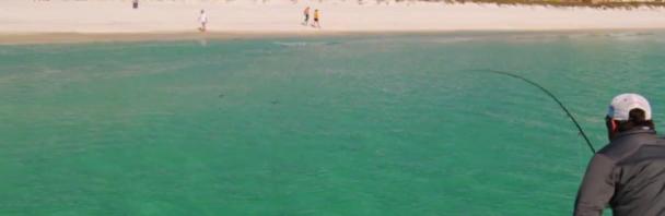 Video Goodness: Destin Beach Fishing