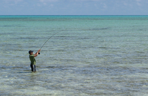 Dos & don'ts of flats fishing