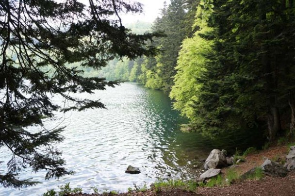Picture Special: Fishing in the Cantal, France