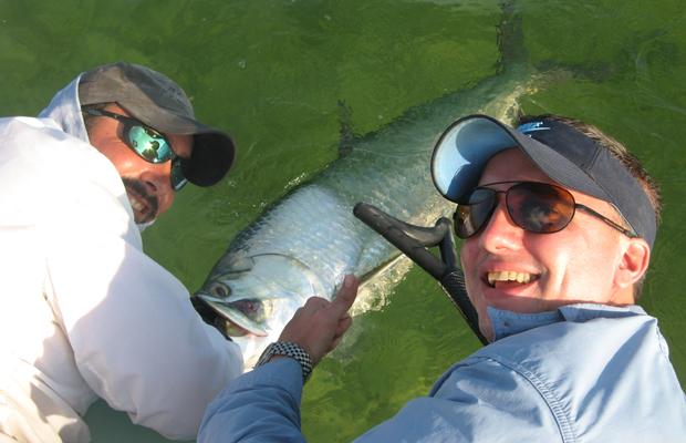 Florida Keys tarpon