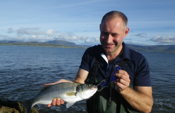 Fishipedia Report: Bass Fishing in Kerry, Ireland