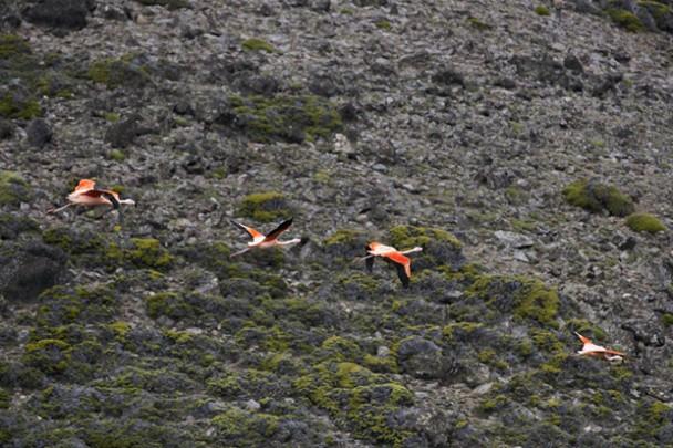 Trip Report: Kooi Noom, Patagonia - Day 1