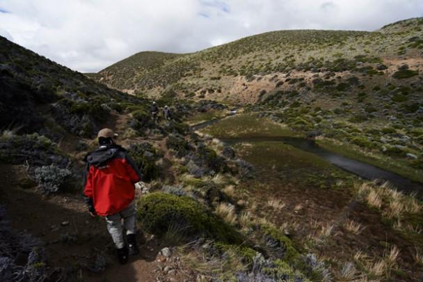 Trip Report: Kooi Noom, Patagonia - Day 6