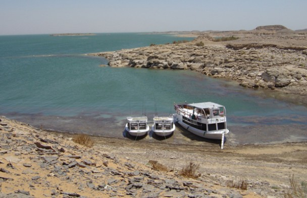 Nile Perch Heaven, Lake Nasser, Egypt