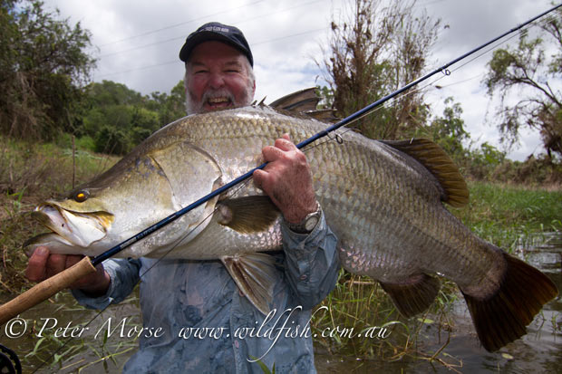 The Fishipedia Q&A: Peter Morse