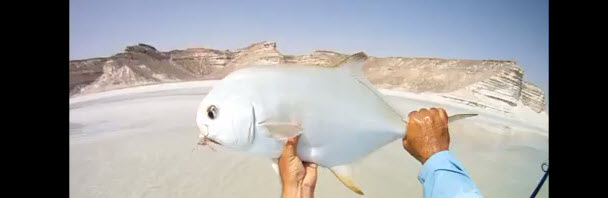 Video Goodness: Fly Fishing for Arabian Permit