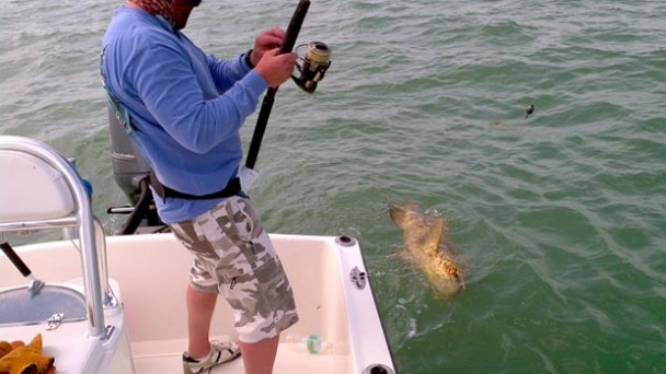 Upper Keys Fishing Report with Capt. Rick Stanczyk (Feb 28, 2013)