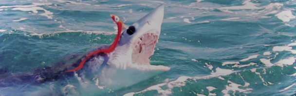 Video goodness: 'Speed, Muscle & Teeth' trailer