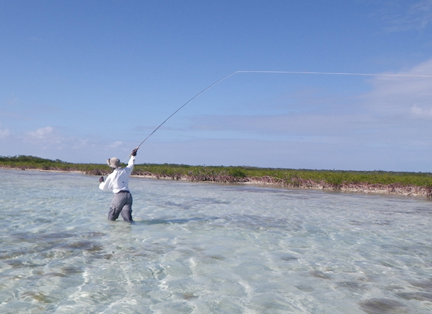 Fishipedia Top 5: Flats wading tips