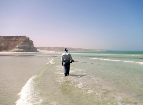 Scanning the flats of southern Oman for permit