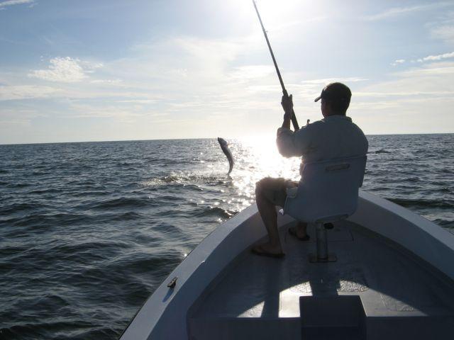 Tarpon fishing, Tortuguero