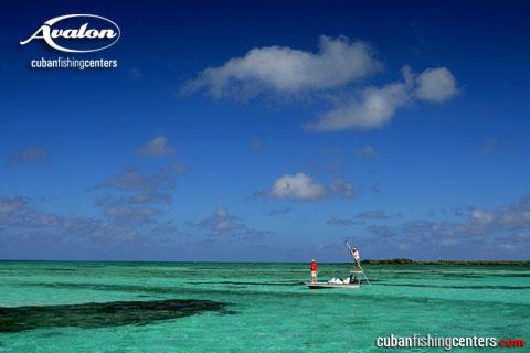 Isle of Youth - tarpon country