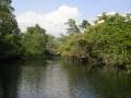 Deep in tarpon territory, Rio Hatiguanico