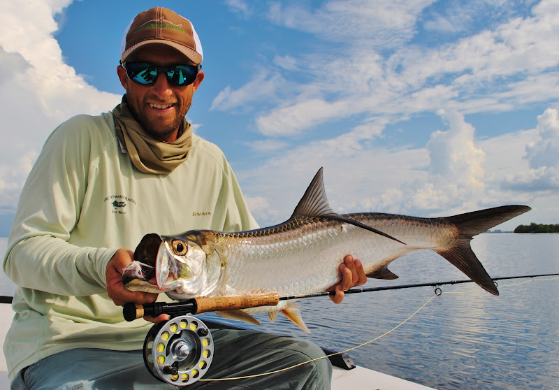 A Pine Island tarpon. Pic courtesy of Wildfly Charters