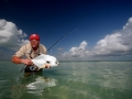 The ultimate prize: a permit on the fly