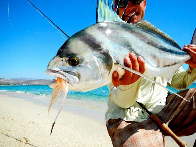 Pursuit Anglers, Baja
