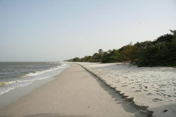 Orango Island (Salty Dog Game Fishing, Guinea-Bissau)
