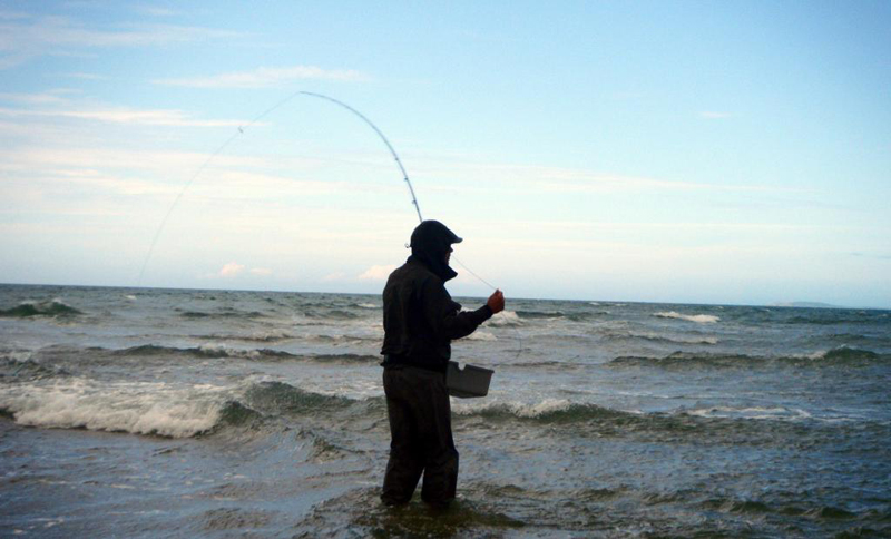 South East Angling Services