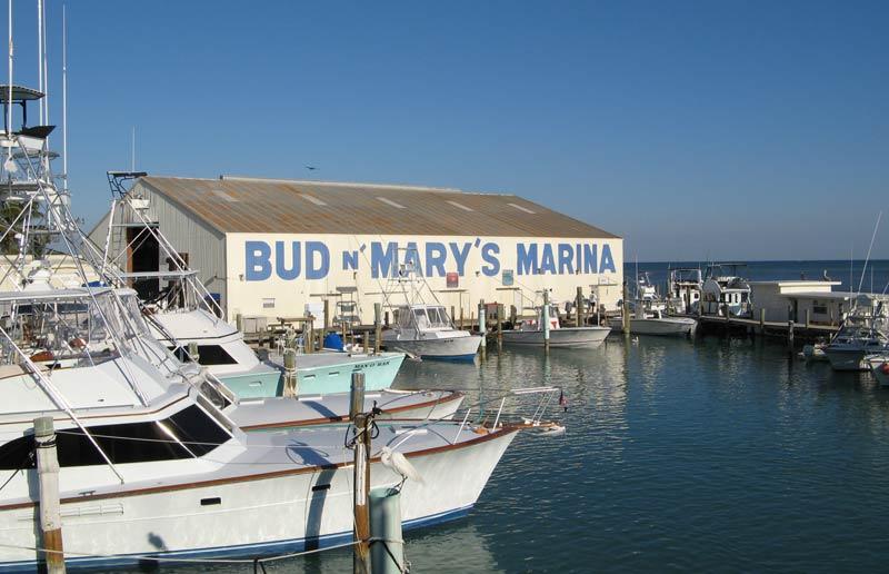 Bud n\' Mary\'s Marina, Islamorada